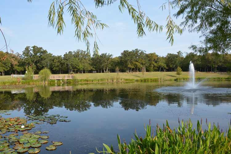 Pond In Highland Village Tx