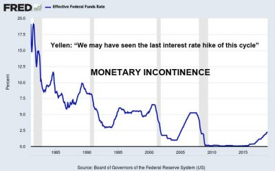 Monetary-Incontinence-Jan-2019
